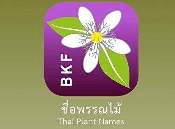 Thai plant names เก็บตัวอยู่กับบ้านจนหลายคนได้งานอดิเรกใหม่ๆ อย่างการปลูกต้นไม้หรือจัดสวน
